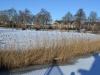 Winterwandeling-20210214-A-Monsma-7