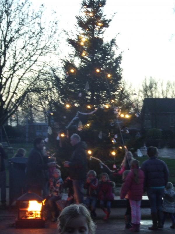 Inzamelingen kerstbomen