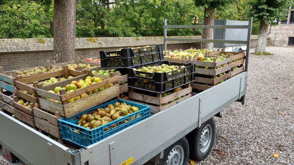 Appel- en perenoogst Poptaslot geperst tot appelsap
