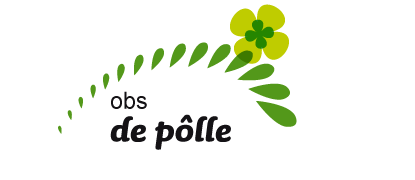 Wolda stopt als directeur bij O.B.S. de Pôlle