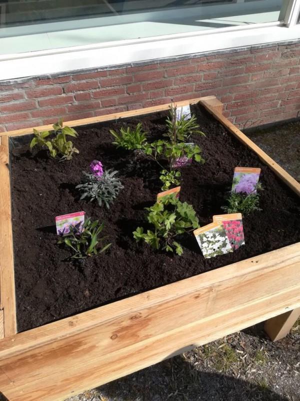 Nieuwe bloembakken fleuren schoolplein op