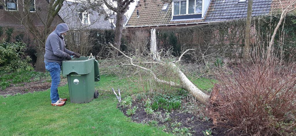 Storm wordt enkele bomen fataal