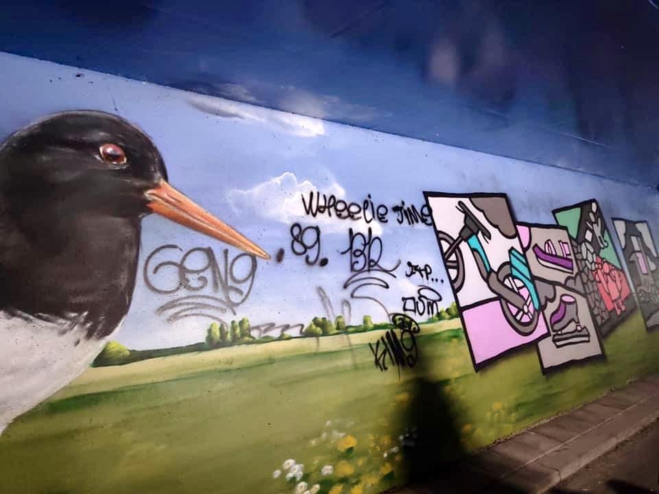 Dotingatunnel beklad met graffiti